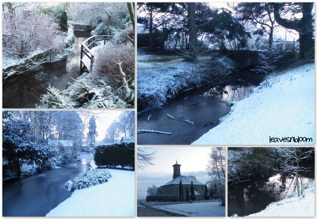collage of winter photos from Perth lade