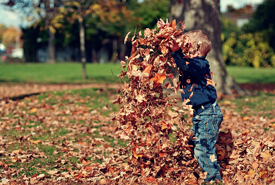 boy throwing autumn leaves ... being a mum