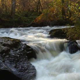 degrees of kelvin white balance - bunchanty spout in autumn