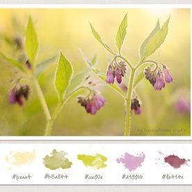 Fix Colour Casts on Images