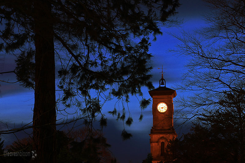 best nature photos 2012 - blue hour photography with a clock illuminated on a tower