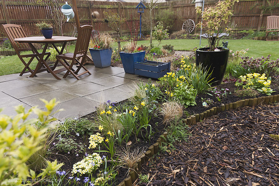 the little splashes of yellow from the daffodils , primroses and cowslips brighten up a dull and wet March day.