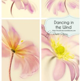 dancing in the wind series of images
