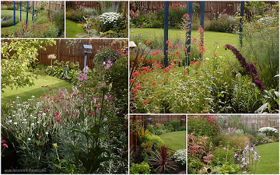 this is an image of the back garden with cottage garden flowers
