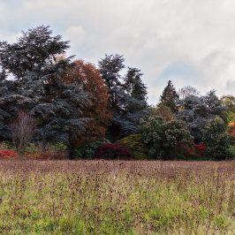 Scottish national heritage Battleby in autumn